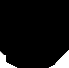 Logo Ptasie radio